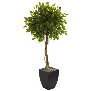 5.5 Feet Ficus Artificial Tree in Black Wash Planter UV Resistant (Indoor/Outdoor) 5780