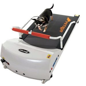 PetRun PR700 Dog Treadmill PR700