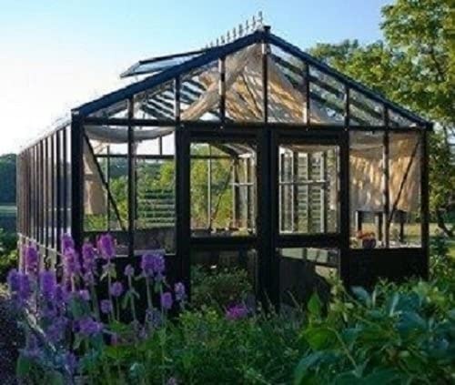 Exaco Trading Retro Royal Victorian VI 34 Greenhouse with Decorative Panels and Narrow Glass